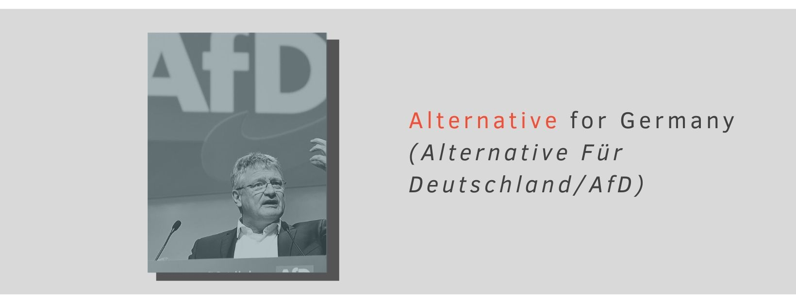 AFD leader with a backdrop of the AfD logo